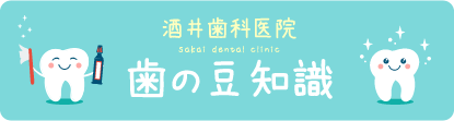 歯の豆知識